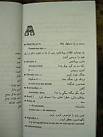 ghiassi-petit-dictionnaire-langue-verte-04.jpg: 450x600, 28k (28 avril 2010 à 19h31)