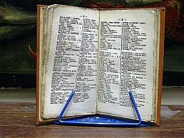 halbert-dictionnaire-complet-jargon-argot-1849-1-06.jpg: 650x488, 88k (04 novembre 2009 à 03h12)