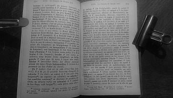 kron-petit-parisien-1921-203.jpg: 1024x579, 85k (21 avril 2014 à 13h11)