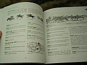 lefanstouf-argot-du-turf-2010-5.jpg: 600x450, 35k (28 avril 2010 à 19h28)